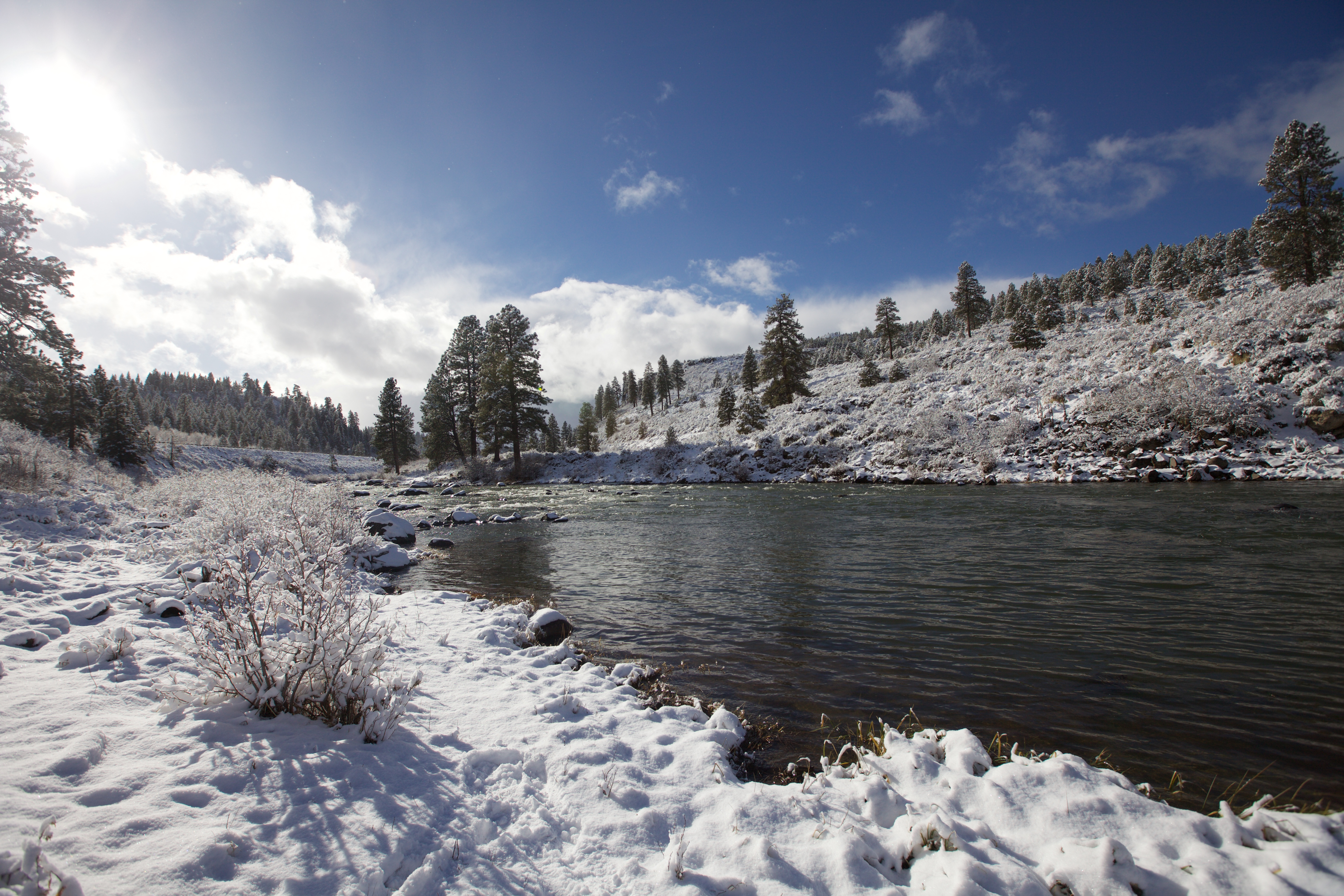 Year Round Fly Fishing in Truckee